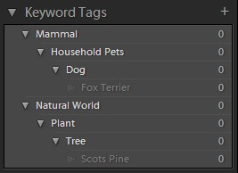A simple Keyword List displayed in Lightroom