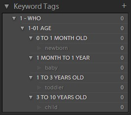 Keyword List with Category Words displayed in Lightroom